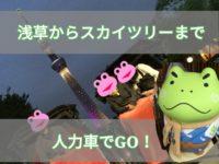浅草雷門から東京スカイツリーまで人力車に乗ってみた話【浅草のカエルスポット】【視界不良の日のスカイツリー】