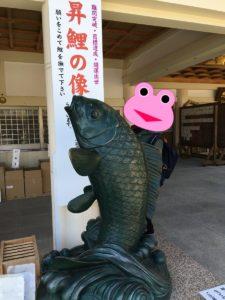 広島護国神社の鯉の像
