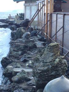 二見興玉神社の海岸沿いのかえると夫婦岩