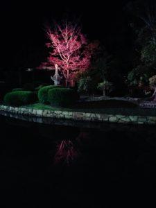 夜の奈良国立博物館の中庭