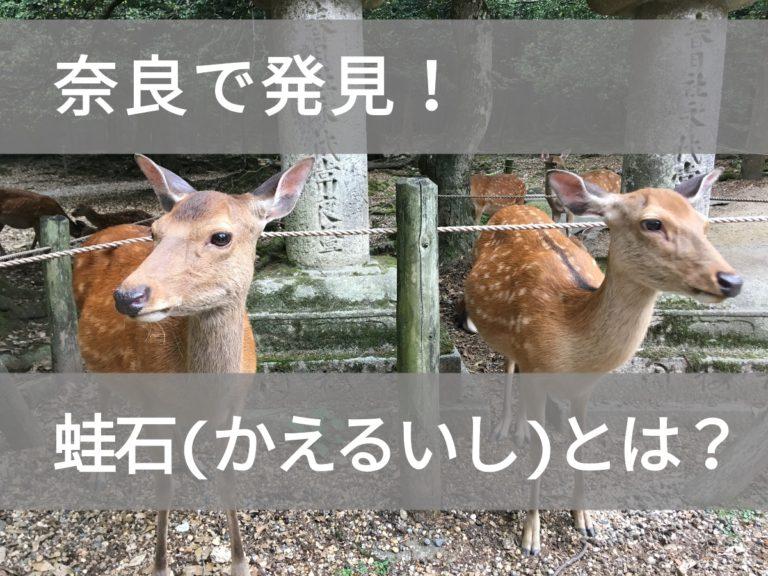 奈良の蛙石についての投稿のアイキャッチ画像
