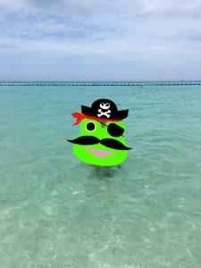 ザ・ブセナテラスの晴れた日のビーチで泳ぐ様子