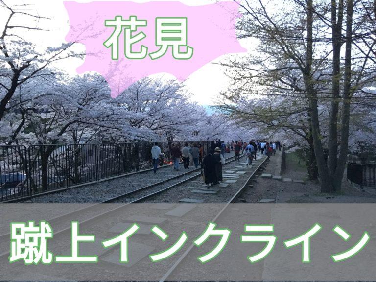 京都蹴上インクラインで花見のアイキャッチ画像