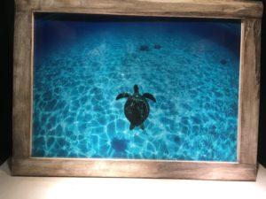 ロワジールホテル那覇の廊下のカメの写真