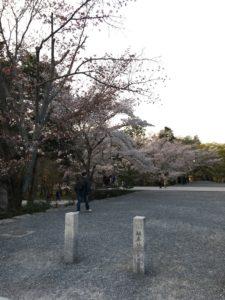 南禅寺の道