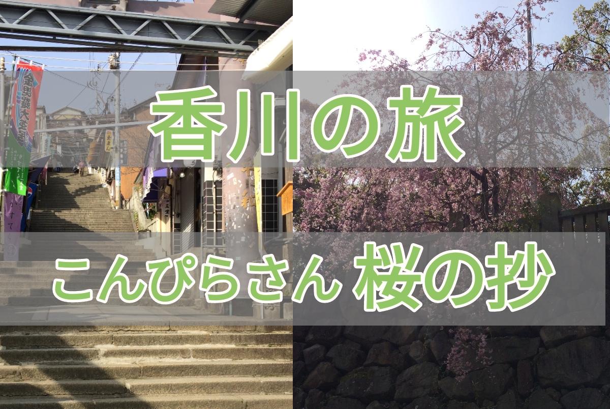 香川県こんぴらさん桜の抄のアイキャッチ画像
