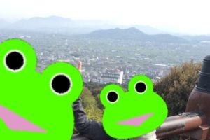 こんぴらさんの高台からの景色