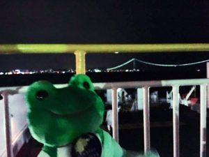 フェリーさんふらわあから見た夜の明石海峡大橋とかえる