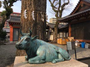 大分市の長浜神社の牛の像と木