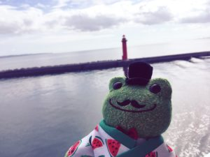宇和島フェリーから見た海とひげのカエルのぬいぐるみ