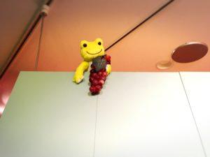 天井付近のピクルスとブドウ
