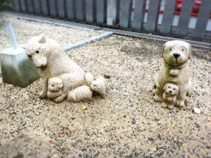 白崎八幡宮の犬の石像