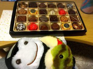 チョコレートと緑のヘビとカエル