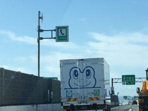 カエルの絵のトラック