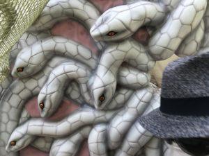 忍里のヘビスポット・潜影蛇手