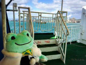徳山港スオーナダフェリーと海とカエル2